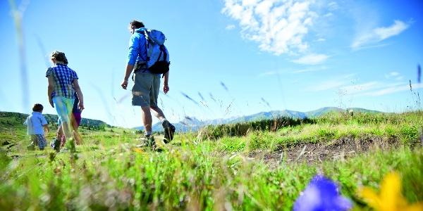 Panoramica escursione all'Alpe di Rodengo e Luson.