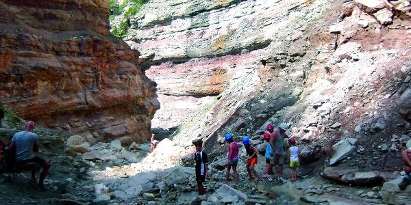 Escursione circolare che si snoda vicino alla Gola del Rio Bletterbach