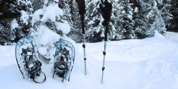 Schneeschuhe sind meist nötig, im Spätwinter reichen oft Bergschuhe.