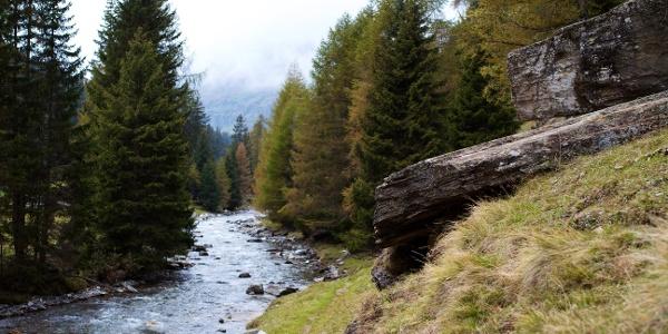 Hiking in thePfelderer Tal/Val di Plan Valley