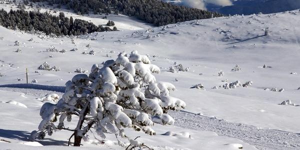 Auf dem Winterweg Richtung Rittner Unterhornhaus