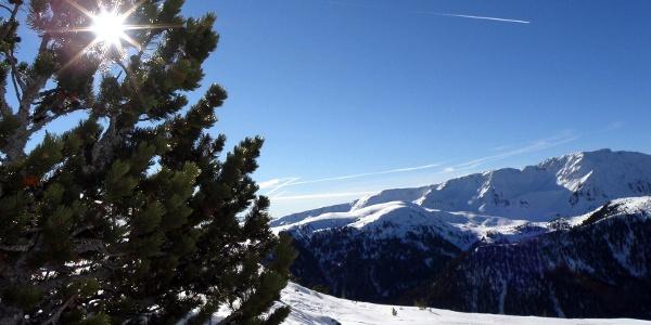 Berge, wohin das Auge reicht – der Villanderer Berg in den Sarntaler Alpen