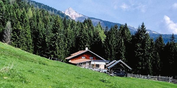 Die Lahneralm, im Hintergrund das Aldeiner Weißhorn