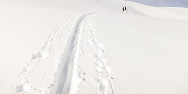 From the Val Martello valley to the Orecchia di Lepre mountain.