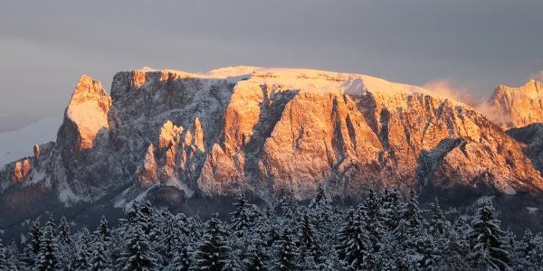 Mit einzigartigem Ausblick auf den Schlern wandert man über die Forsthütte Lodn zur Saltnerhütte am Ritten.