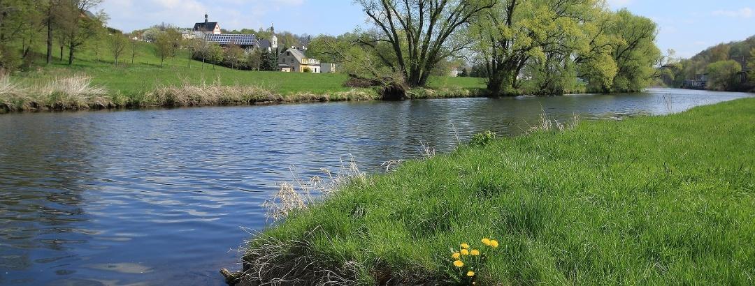 Landschaft an der Zwickauer Mulde im Dorf Remse
