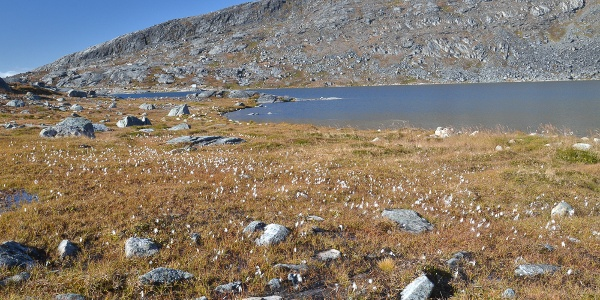 Quasussuaq traverse 1. Photo by Jakob Abermann