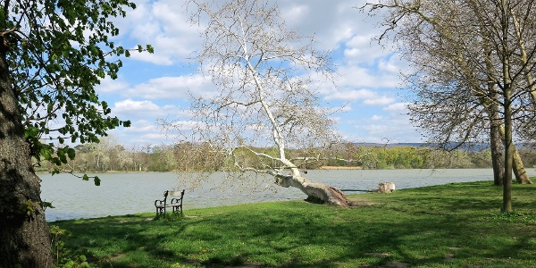 A festői Cseke-tó