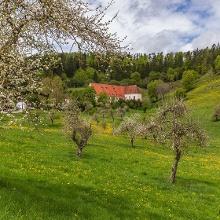 Das ehemalige Kloster Bernstein