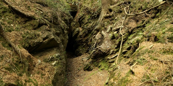 Leuchtmooshöhle
