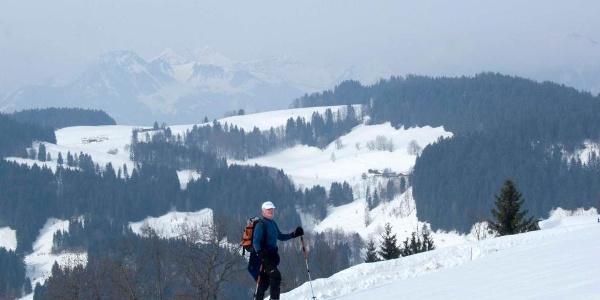 In der Nähe der Wildbichler Alm beim Aufstieg zum Wandberg