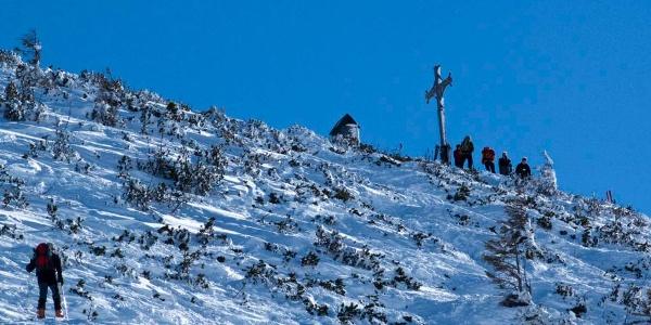 Bei den letzten Aufstiegsmetern im Latschenhang blutet dem Naturfreund das Herz.