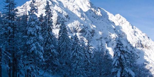 Von den Pistenhängen zeigt sich während des Aufstiegs die wilde Nordseite des Herzogstands.