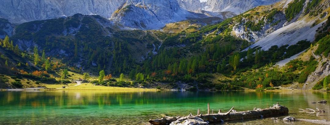 Alpsee im bayerischen Gebirge