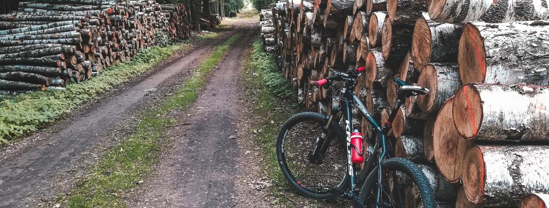 Radfahren rund um Oberstaufen