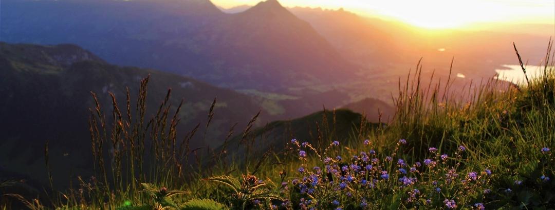 Wandern am Südufer des Thunersees im Berner Oberland in der Schweiz