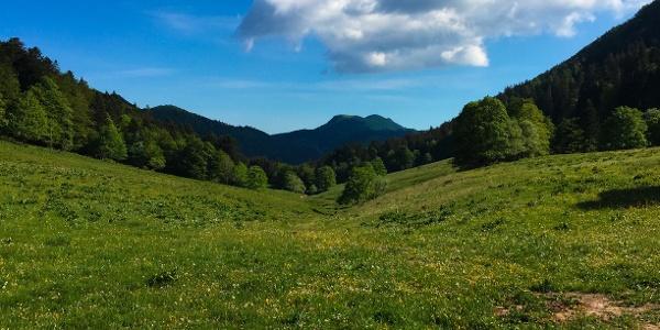 Combe du Cimetière - Grand Colombier - Col de la Biche - Sur Lyand