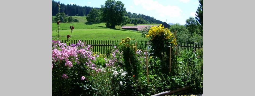 bildervomhausundgarten006