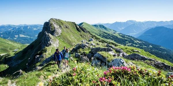 Wandern alpin Hammerspitze