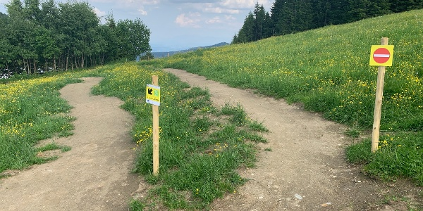 Kids`Area Uphill Trail