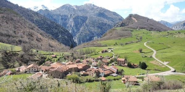 Village of Cicera
