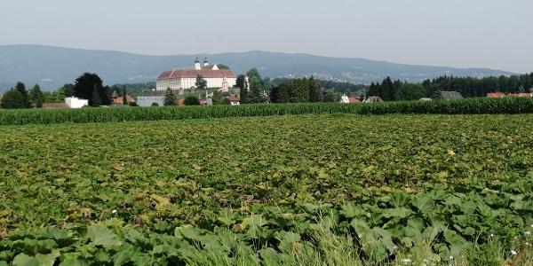 Blick auf das Schloss Stainz