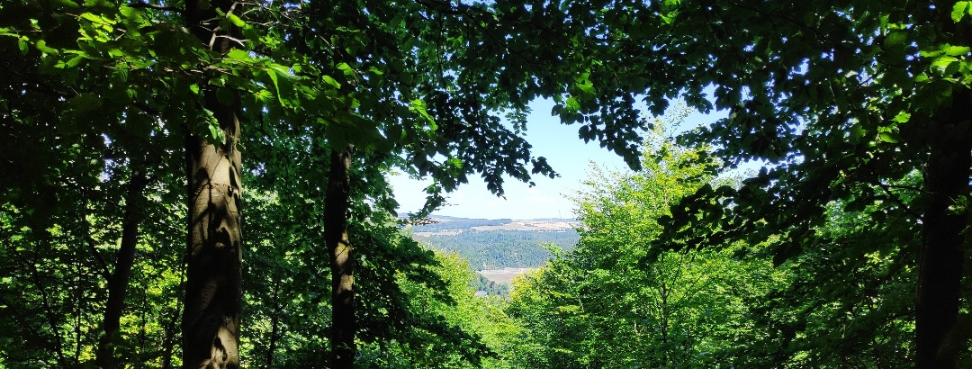 Nationalpark Kellerwald-Edersee - Ausblick auf der Ringelsberg-Route (UNESCO Weltnaturerbe)