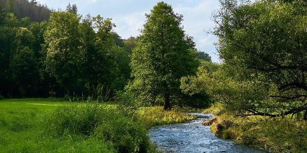 Polenztal nähe Bockmühle