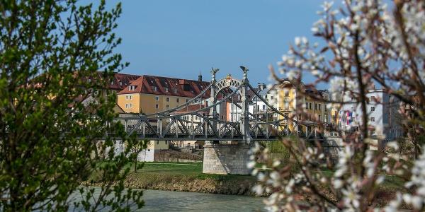 Frühling in Laufen und Oberndorf