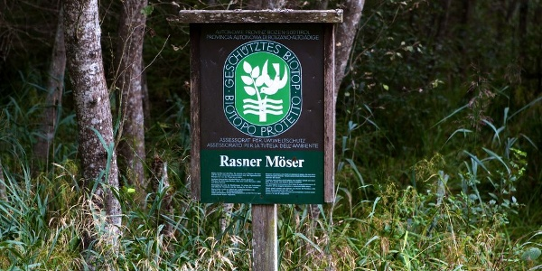 1973 wurden circa 23 ha der Rasner Möser im Antholzertal, eine ausgedehnte Sumpf- und Moorlandschaft, unter Schutz gestellt.