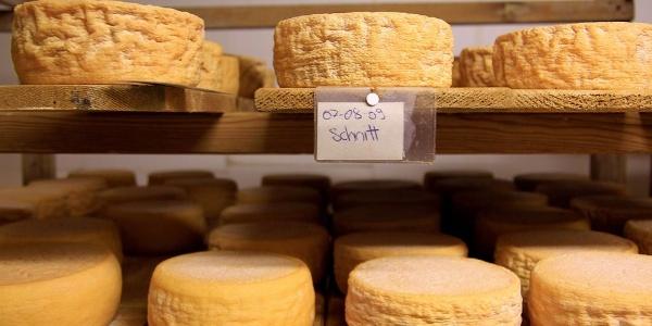 Die Arbeit ist getan. Das Ergebnis kann sich sehen lassen. Unzählige Käselaibe lagern im Käsekeller des Chi Prá Hofes.