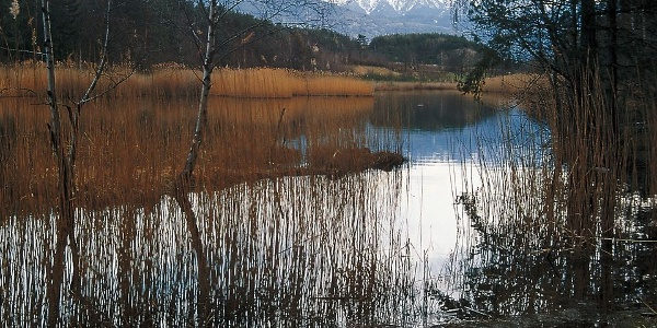 Der Vahrner See bei Brixen