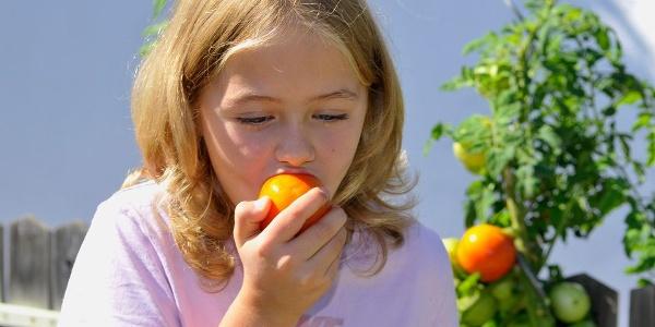 Der Biss in die hofeigenen Früchte erfreut. Es muss nicht immer süss sein.