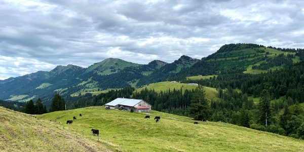 Vom Imberg mit Blick ins Ehrenschwanger Tal und die Nagelfluhkette
