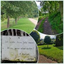Wald und Feld Wege