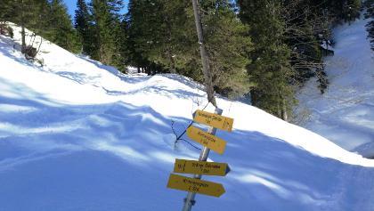 Links Schneeschuh, Rechts Tourenski