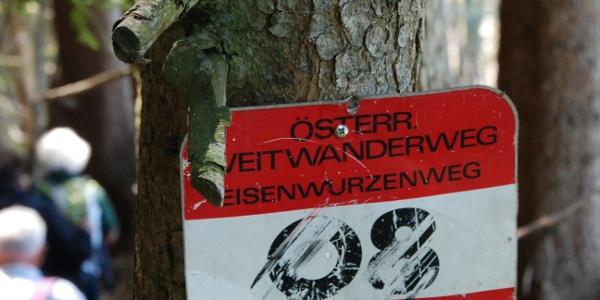 Wegmarkierung bei Diemannsdorf