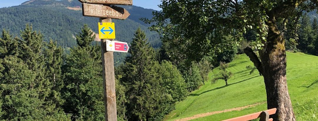 Almgebiet Kernhof-Bosenstein