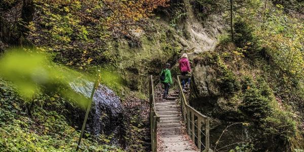 Wanderinnen in der Gorge du Gotteron