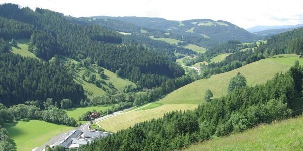 Ausblick Richtung Birkfeld