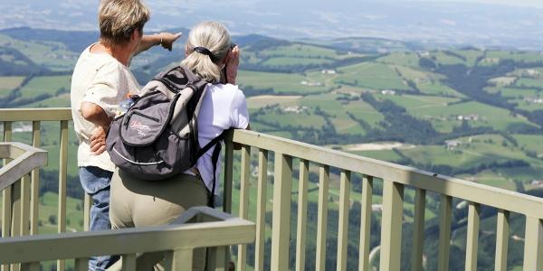 Aussicht vom Prochenberg