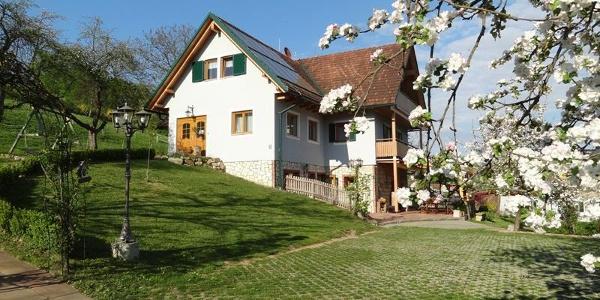 Ferienhaus Zotter in Feldbach