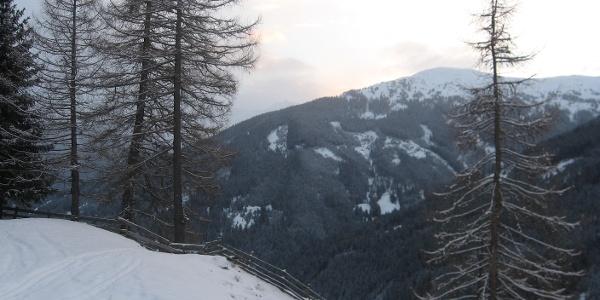 Das Bild wurde oberhalb des Schmiedhofes aufgenommen. Blick Richtung Sattelberg.