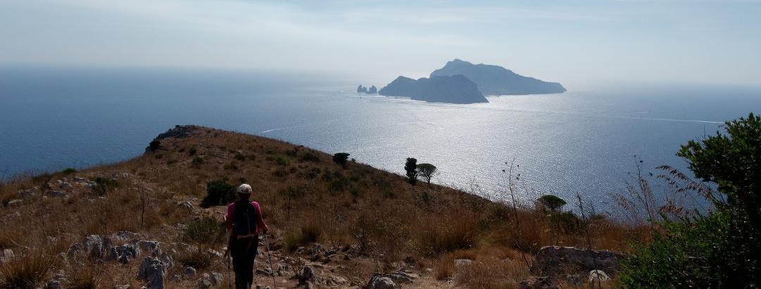 Ammirando Capri in discesa verso Punta Campanella.