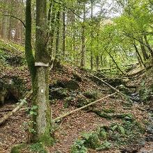 T 3 - Moselle mountain romanticism. Photo 1
