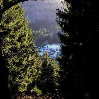 Blick von den Kellerköpfen auf Forsthaus Kaltenscheid