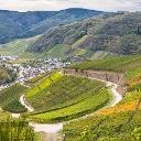 Das Ahrtal ist von Weinbau geprägt.