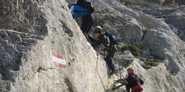 Kurz nach dem Serlesjöchl kommt die seilversicherte Stelle, ab hier sollte man Kinder bis zum Gipfel ans Seil nehmen.