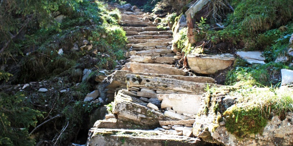 Etappe 9: Steintreppe im Furggwald, Avers