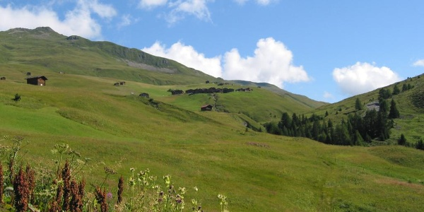 Etappe 18: Strassberg, Fondei